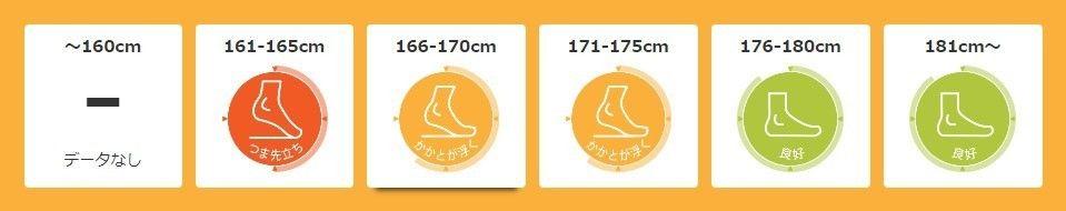 zrx1200daeg_ashi.jpg