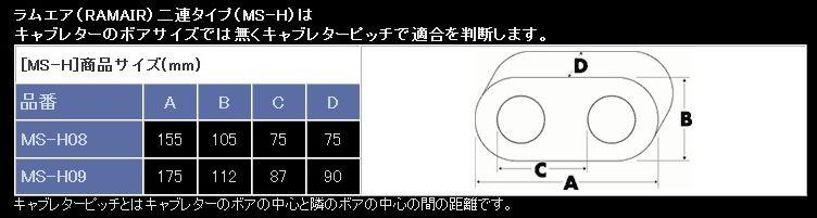 nms-h088.jpg