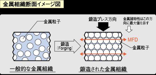 ●鍛造された金屬組織斷面イメージ