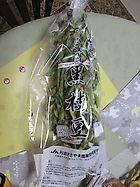 毎年恒例! 丹波篠山黒枝豆
